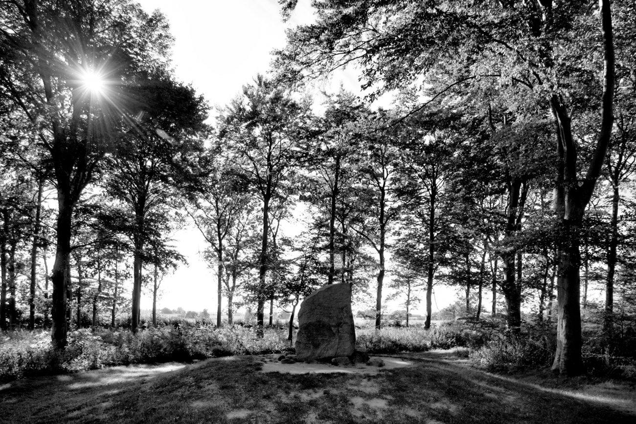 Dänemark - Insel Fünen, Glavendruplunden Runesten.