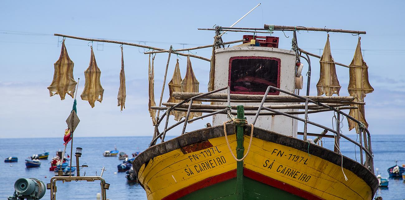 Madeira: Camara de Lobos - Bacalhau ist ein gesalzener und anschließend getrockneter Fisch.
