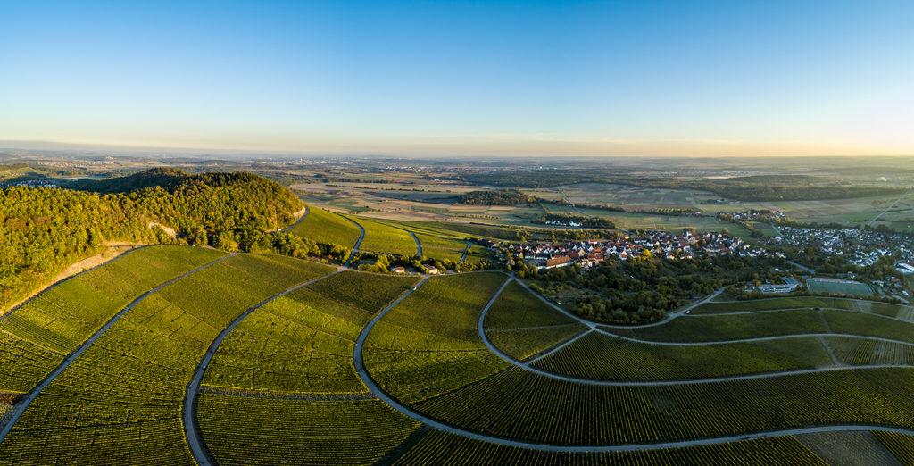 Weinberge rund um Hohenhaslach