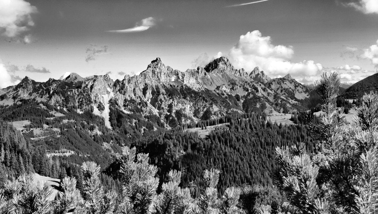 Die Rote Flüh ist ein Berg in den Tannheimer Bergen, einer Untergruppe der Allgäuer Alpen. Sie ist 2108 m hoch.