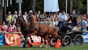 Bietigheimer Pferdemarkt 2010