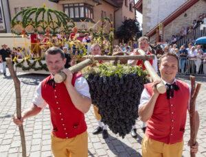 Besigheim: Winzerfest, Festumzug durch die mittelalterliche Stadt